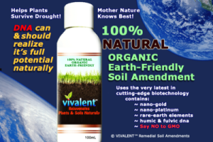 001-vivalent-FINAL-LABEL-100ml-bottle850-567